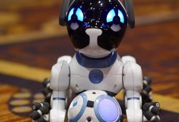 Akıllı Köpek Chip K9 CES 2016'da Görüldü